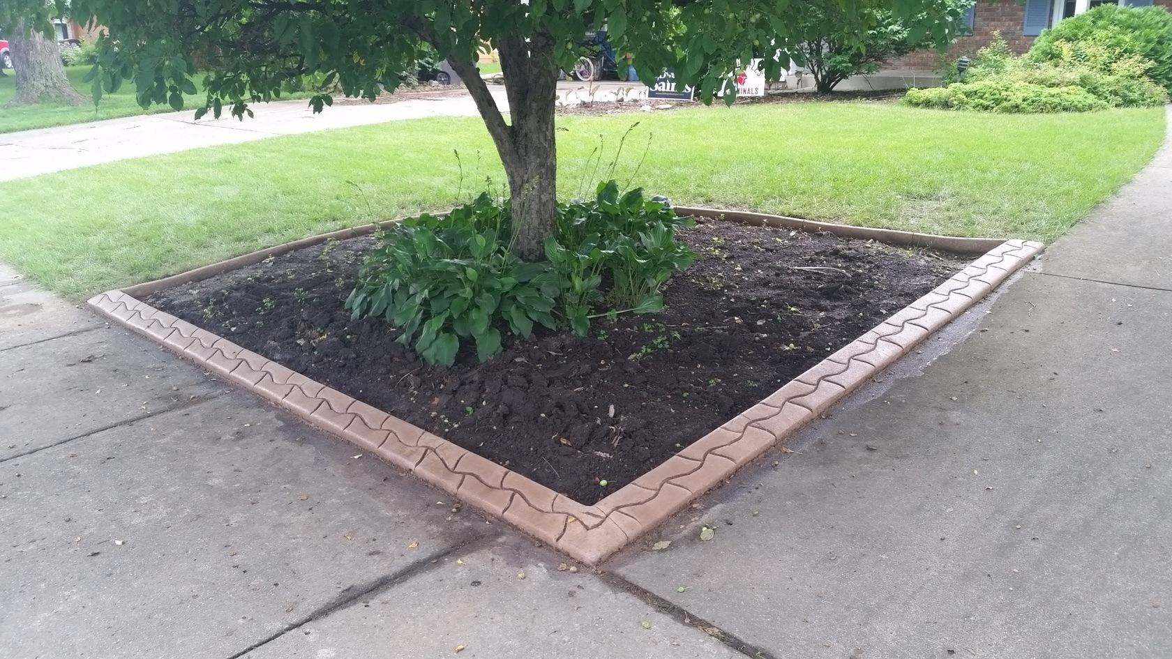 Options For Concrete Landscape Edging